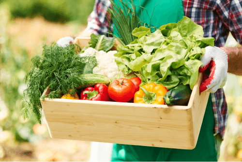 5 Reasons You Must Eat Greens Everyday