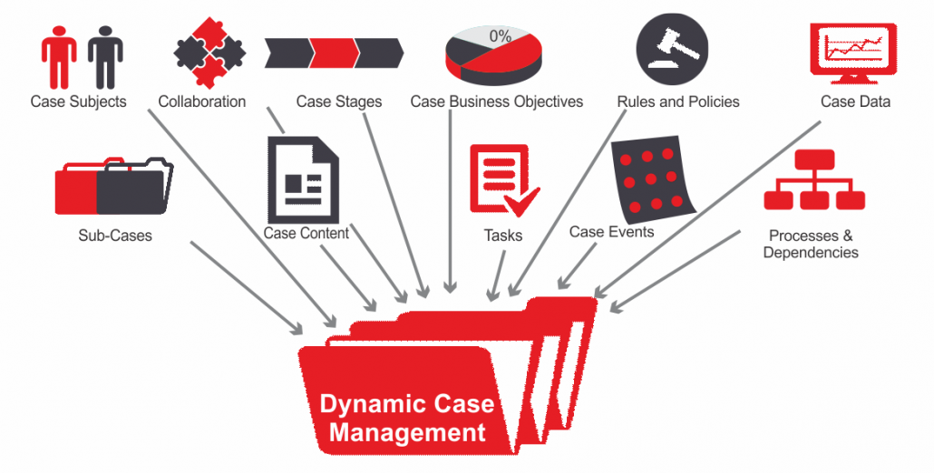 dyamic case management Delivery Centric