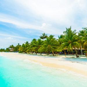 maldives_island (1)